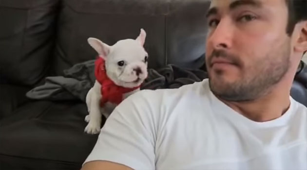 He Brought him a red Bandana…The Puppy's Reaction was Hilarious!